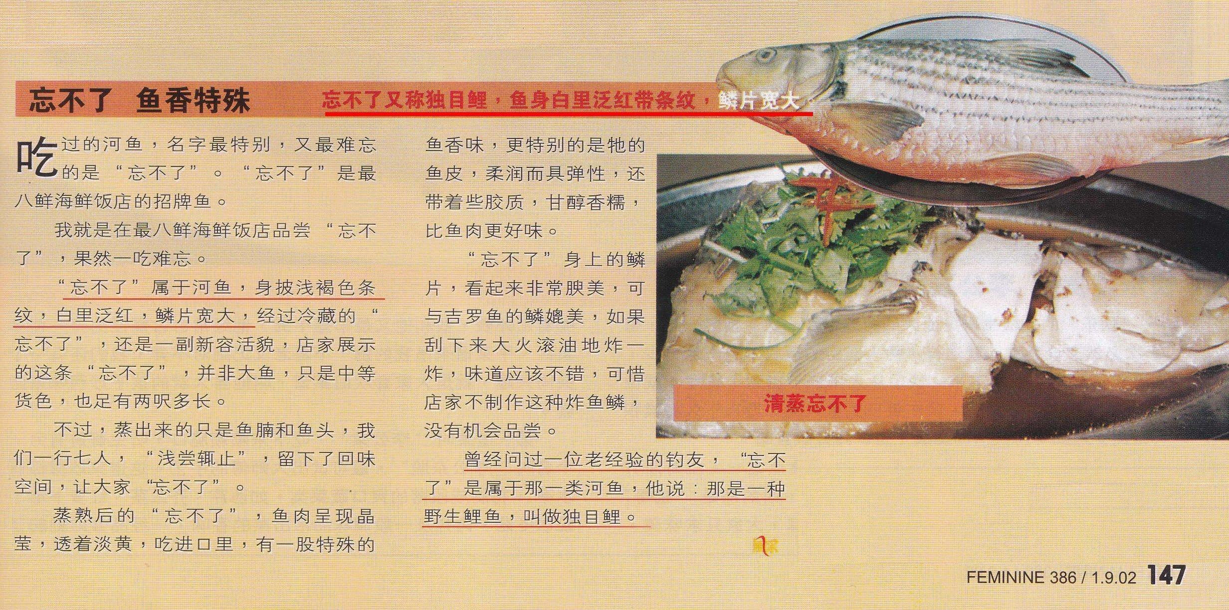 马来西亚美食家鼻祖-误导鱼类
